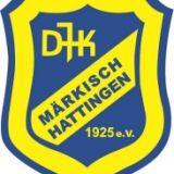 D Jugend im Pokal Halbfinale... gegen den VfL